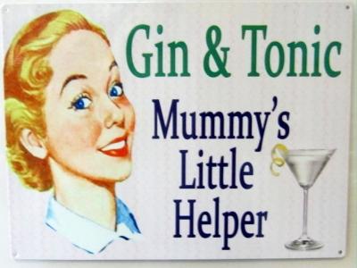 Gin Tonic  Blechschild  30x41