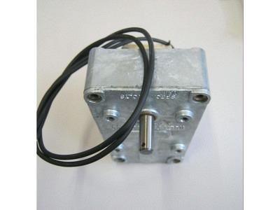 Platten Transfer Motor 110V oder 220V (Greifer-Motor)