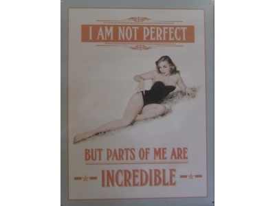 I am not perfect  Blechschild  30x41